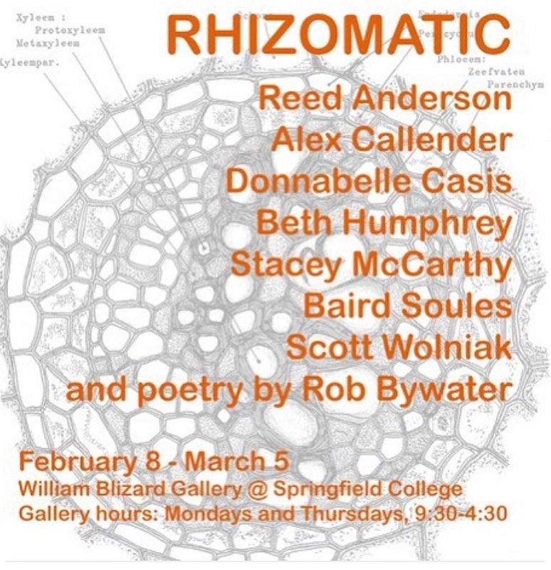 Rhizomatic - William Blizard Gallery, Springfield College